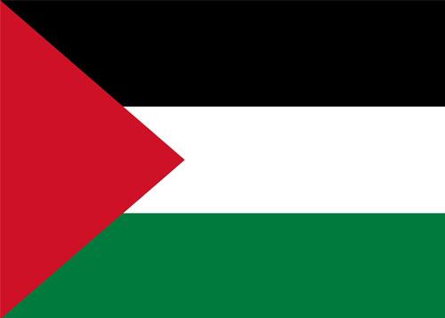 palestinw waf flag